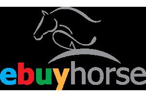 Logo Ebuy Horse